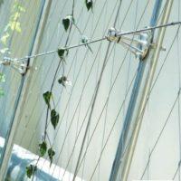 Návrat přírody do měst<br/>Zelené fasády z korozivzodorné oceli